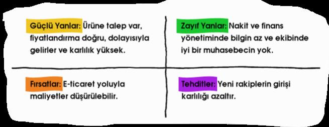 swot analizi örneği